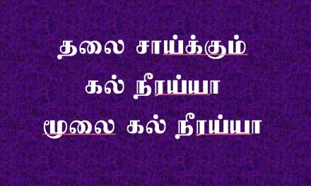 தலைசாய்க்கும் கல் நீரய்யா